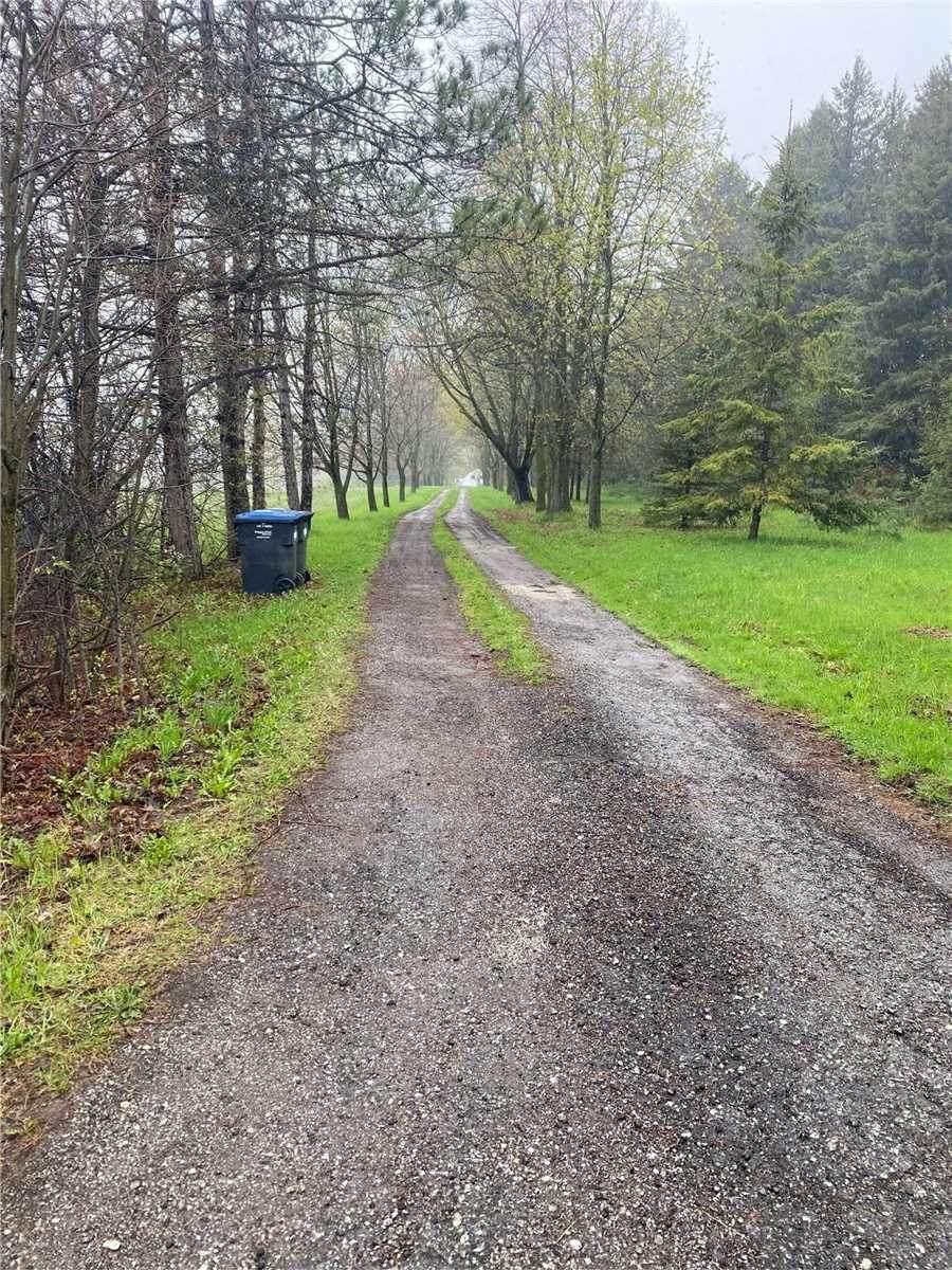 14460 Centreville Creek Rd - Photo 1