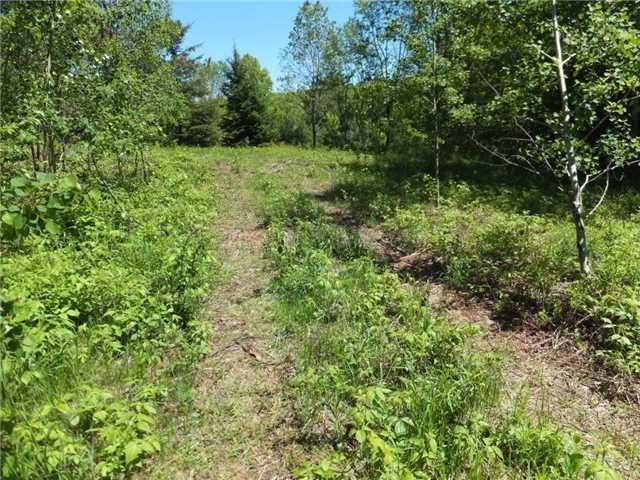 Lot 8 Bobcaygeon Quay, Highlands East, ON K0M 2K0 (#X3884024) :: Beg Brothers Real Estate