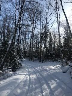 2 Cope Lake Rd, Highlands East, ON K0L 3C0 (#X4022834) :: Beg Brothers Real Estate