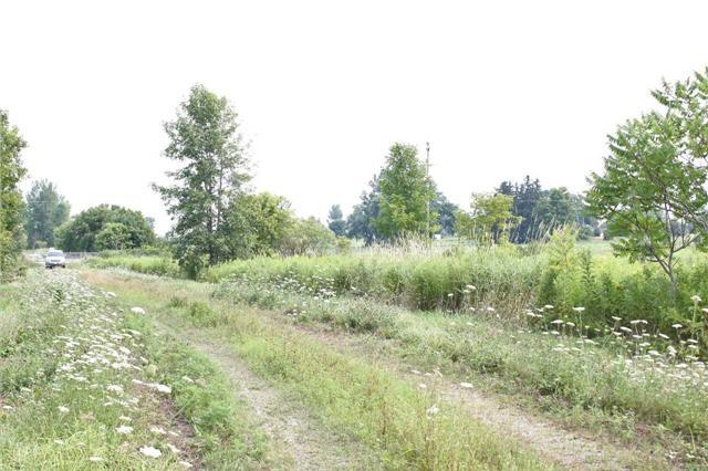 0 Dale Rd & Hwy 28 Rd, Port Hope, ON L1A 3V5 (#X4249294) :: Jacky Man | Remax Ultimate Realty Inc.