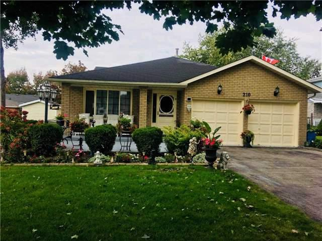 210 Justin's Pl, Wellington North, ON N0G 2L3 (#X4279176) :: Jacky Man   Remax Ultimate Realty Inc.