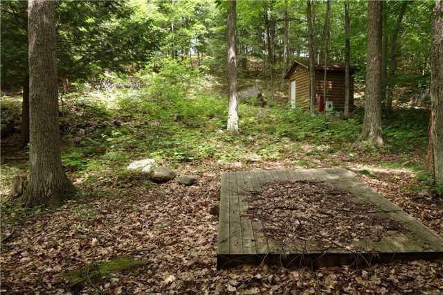 21 Indian Grove Rd, Carling, ON P0G (#X4328876) :: Jacky Man | Remax Ultimate Realty Inc.