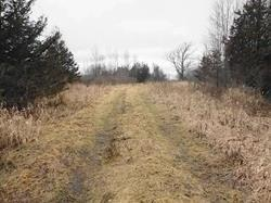 Con 3 County Rd 7 Dr, Loyalist, ON K0H 1G0 (#X4355670) :: Jacky Man | Remax Ultimate Realty Inc.