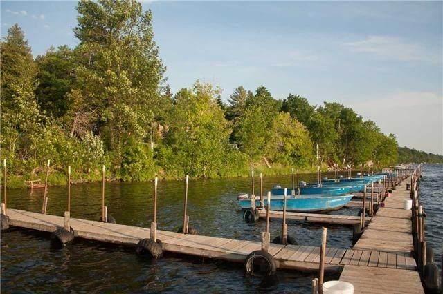 230-232 Lake Dalrymple Rd #11, Kawartha Lakes, ON L0K 1W0 (#X4801822) :: The Ramos Team
