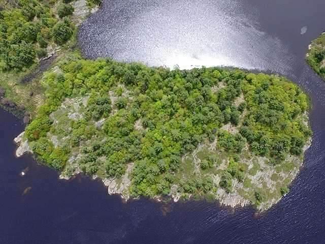 21A Island, The Archipelago, ON P0G 1K0 (#X4835865) :: The Ramos Team
