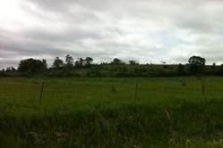 1408 County  10 Rd, Cavan Monaghan, ON L0A 1C0 (#X4899806) :: The Ramos Team