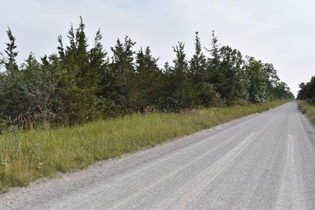 0 Airport Lane, Prince Edward County, ON K0K 2T0 (#X5059112) :: The Johnson Team