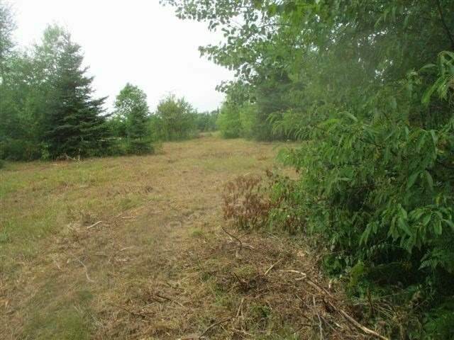 124 Grey Rd Lot 7, Grey Highlands, ON N0C 1M0 (MLS #X5087611) :: Forest Hill Real Estate Inc Brokerage Barrie Innisfil Orillia