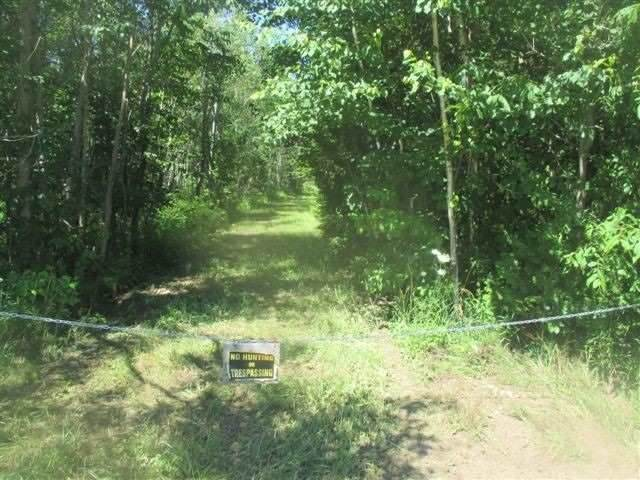 124 Grey Rd Lot 9, Grey Highlands, ON N0C 1M0 (MLS #X5087613) :: Forest Hill Real Estate Inc Brokerage Barrie Innisfil Orillia