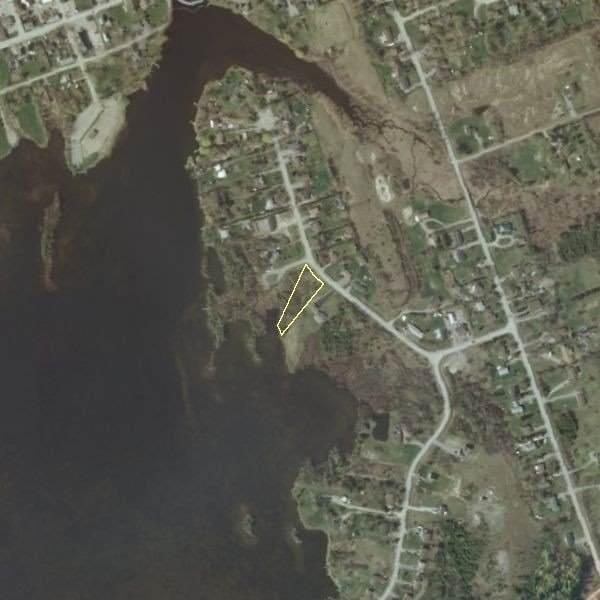 19 Carlton Cres, Kawartha Lakes, ON K0L 2W0 (#X5404765) :: Royal Lepage Connect