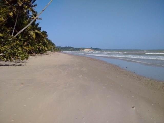 Xx Jackson Trace, Trinidad, ON 35150 (#Z4659886) :: The Ramos Team