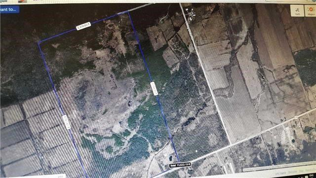 7818 Old Homestead Rd, Georgina, ON L0E 1N0 (#N4111050) :: Beg Brothers Real Estate