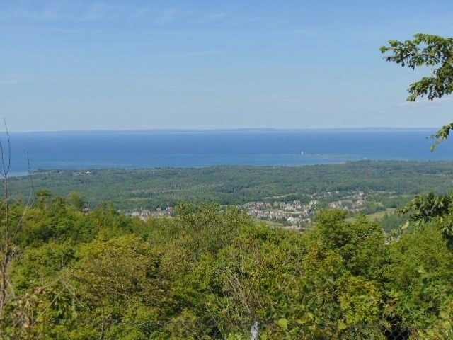 N/A Scenic Cave Rd, Blue Mountains, ON 85020 (#X3437236) :: Jacky Man   Remax Ultimate Realty Inc.
