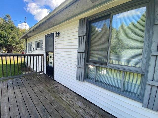 1134 Spruce Tr, Central Frontenac, ON K0H 1B0 (#X5379391) :: Royal Lepage Connect