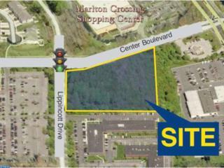300 Lippincott Avenue, Marlton, NJ 08075 (MLS #6063906) :: The Dekanski Home Selling Team