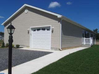 87 Pinetree Lane, Weymouth, NJ 08330 (MLS #6641023) :: The Dekanski Home Selling Team