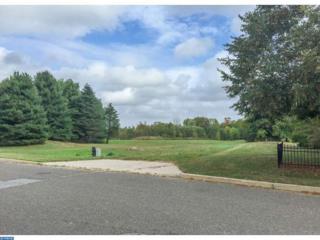 783 Allison Court, Moorestown, NJ 08057 (MLS #6643174) :: The Dekanski Home Selling Team