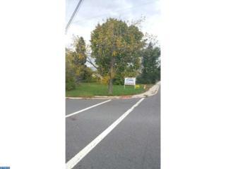 386 Mercer Street, Hightstown, NJ 08520 (MLS #6658975) :: The Dekanski Home Selling Team