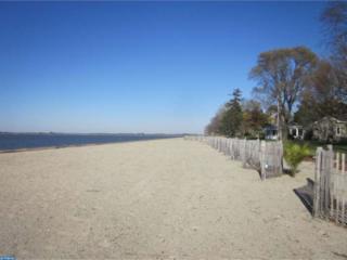 46 Slape Avenue, Elsinboro, NJ 08079 (MLS #6674396) :: The Dekanski Home Selling Team