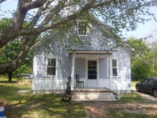 22 Steinfeld Avenue, Elmer, NJ 08318 (MLS #6679252) :: The Dekanski Home Selling Team