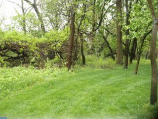 LOT 5 Brigham Way, Pennington, NJ 08534 (MLS #6691632) :: The Dekanski Home Selling Team