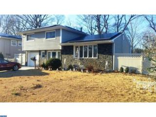 621 Pasadena Drive, Gloucester Twp, NJ 08049 (MLS #6693686) :: The Dekanski Home Selling Team