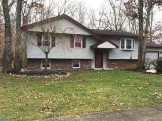 13 Matro Avenue, Berlin, NJ 08009 (MLS #6730306) :: The Dekanski Home Selling Team