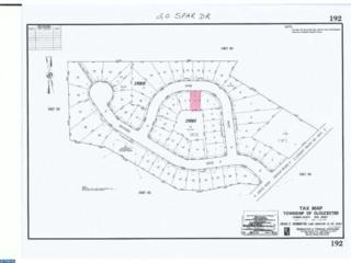 20 Spar Drive, Gloucester Twp, NJ 08081 (MLS #6733924) :: The Dekanski Home Selling Team