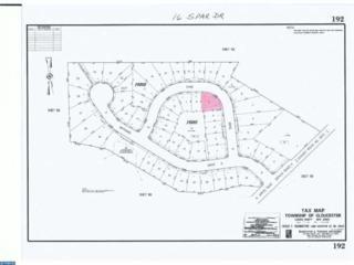 16 Spar Drive, Gloucester Twp, NJ 08081 (MLS #6733927) :: The Dekanski Home Selling Team
