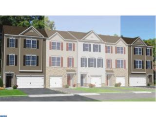129 Bantry Street, Woolwich Township, NJ 08085 (MLS #6743281) :: The Dekanski Home Selling Team
