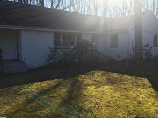 115 Washington Avenue, Chesilhurst, NJ 08089 (MLS #6761567) :: The Dekanski Home Selling Team