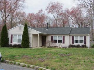 101 Chinkapin Avenue, Williamstown, NJ 08094 (MLS #6765571) :: The Dekanski Home Selling Team