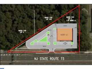 121 Route 73, Berlin, NJ 08009 (MLS #6779106) :: The Dekanski Home Selling Team