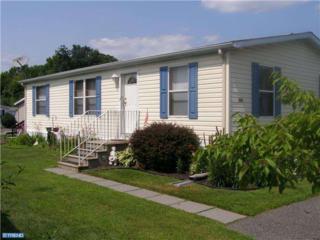 503 Crane Street, Paulsboro, NJ 08066 (MLS #6780829) :: The Dekanski Home Selling Team