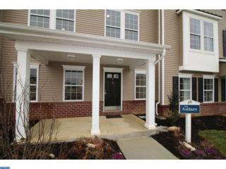 3.1 Borden Lane, CHESTERFIELD TWP, NJ 08515 (MLS #6801693) :: The Dekanski Home Selling Team