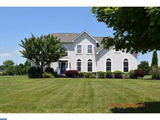 223 Jockey Hollow Run, Woolwich Township, NJ 08085 (MLS #6802292) :: The Dekanski Home Selling Team