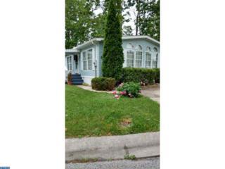 87 Shenandoah Drive, Sicklerville, NJ 08081 (MLS #6808575) :: The Dekanski Home Selling Team