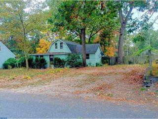 163 Phillips Avenue, Browns Mills, NJ 08015 (MLS #6813153) :: The Dekanski Home Selling Team