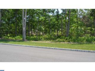 0 N Route 73, Berlin, NJ 08009 (MLS #6815473) :: The Dekanski Home Selling Team