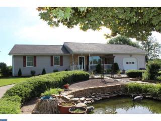 680 Salem Fort Elfsborg Road, Elsinboro, NJ 08079 (MLS #6825544) :: The Dekanski Home Selling Team