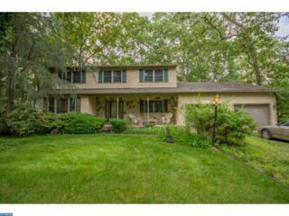 29 Summer Drive, Berlin, NJ 08009 (MLS #6833286) :: The Dekanski Home Selling Team