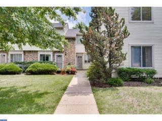 93 Chatham Court, East Windsor, NJ 08520 (MLS #6837179) :: The Dekanski Home Selling Team