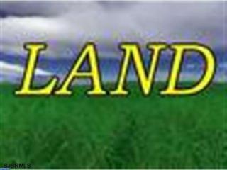 0 Mackeys Lane, Leesburg, NJ 08327 (MLS #6837203) :: The Dekanski Home Selling Team