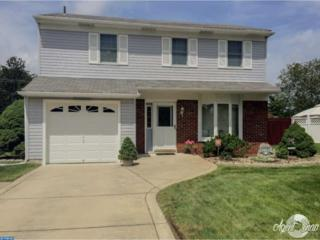 253 Ipswich Lane, Williamstown, NJ 08094 (MLS #6842331) :: The Dekanski Home Selling Team