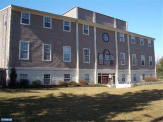 83 Princeton Avenue 2 D, Hopewell, NJ 08525 (MLS #6842972) :: The Dekanski Home Selling Team