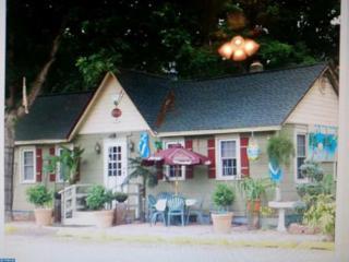 5324 White Horse Pike, Mullica Twp, NJ 08215 (MLS #6843555) :: The Dekanski Home Selling Team