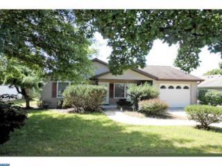 624 Canal Drive, Pine Grove, PA 17963 (#6848014) :: Ramus Realty Group