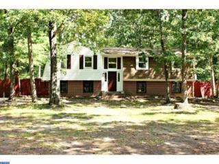 50 Summit Drive, TABERNACLE TWP, NJ 08088 (MLS #6856183) :: The Dekanski Home Selling Team