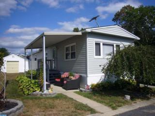 325 Jasmine Lane, Williamstown, NJ 08094 (MLS #6859680) :: The Dekanski Home Selling Team