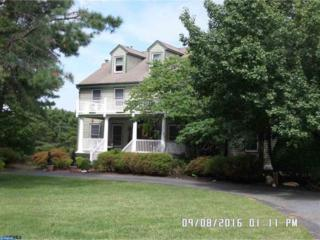 15 N Cavesson Drive, Galloway, NJ 08205 (MLS #6862353) :: The Dekanski Home Selling Team